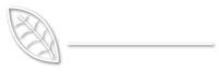 New Forest Tree Surgery Logo